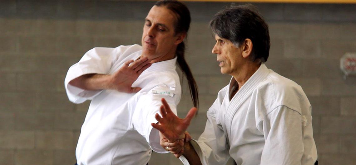 "Stanley Pranin's ""Zone Theory of Aikido"""