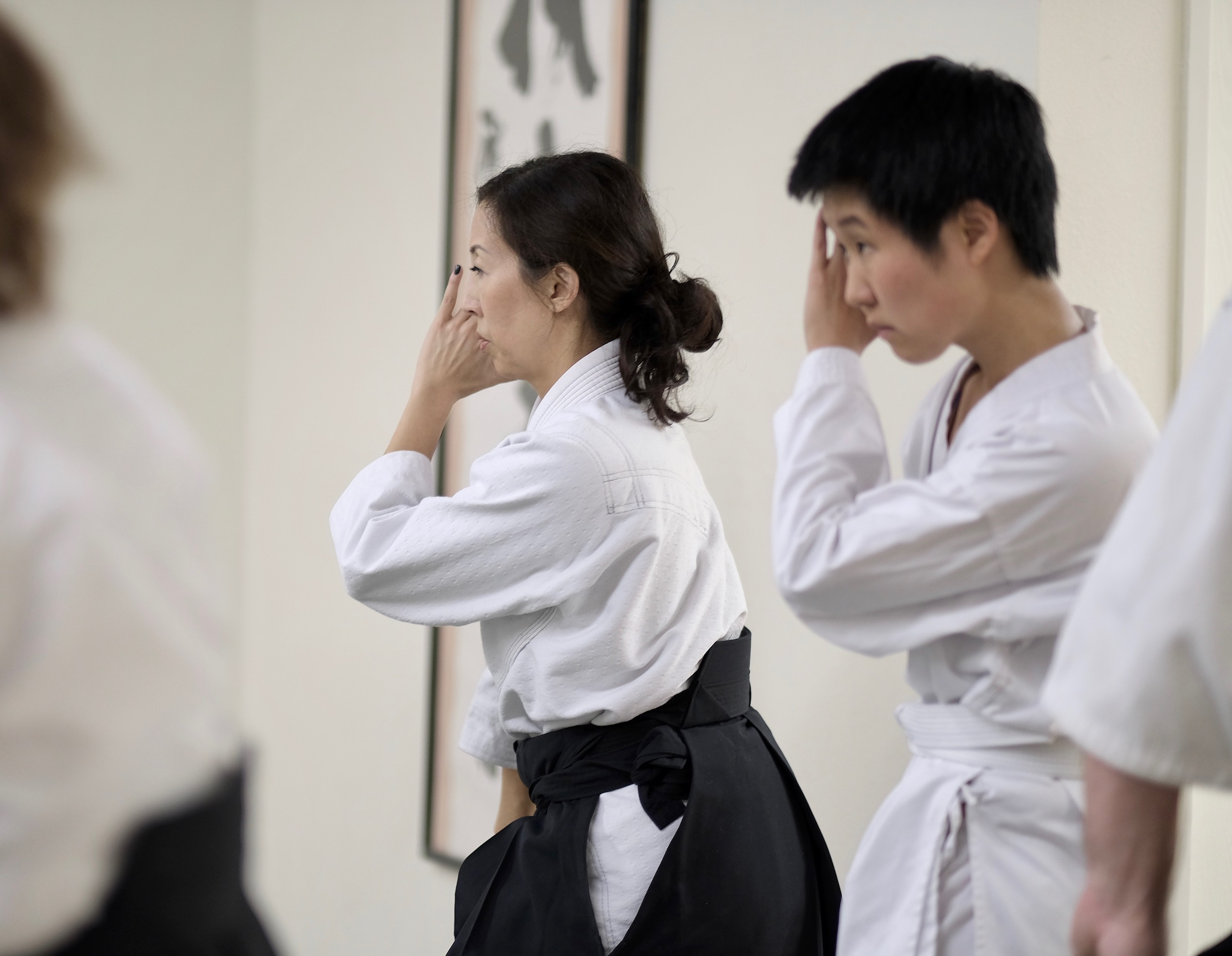 Why the World Needs Aikido, A Millennial's Perspective