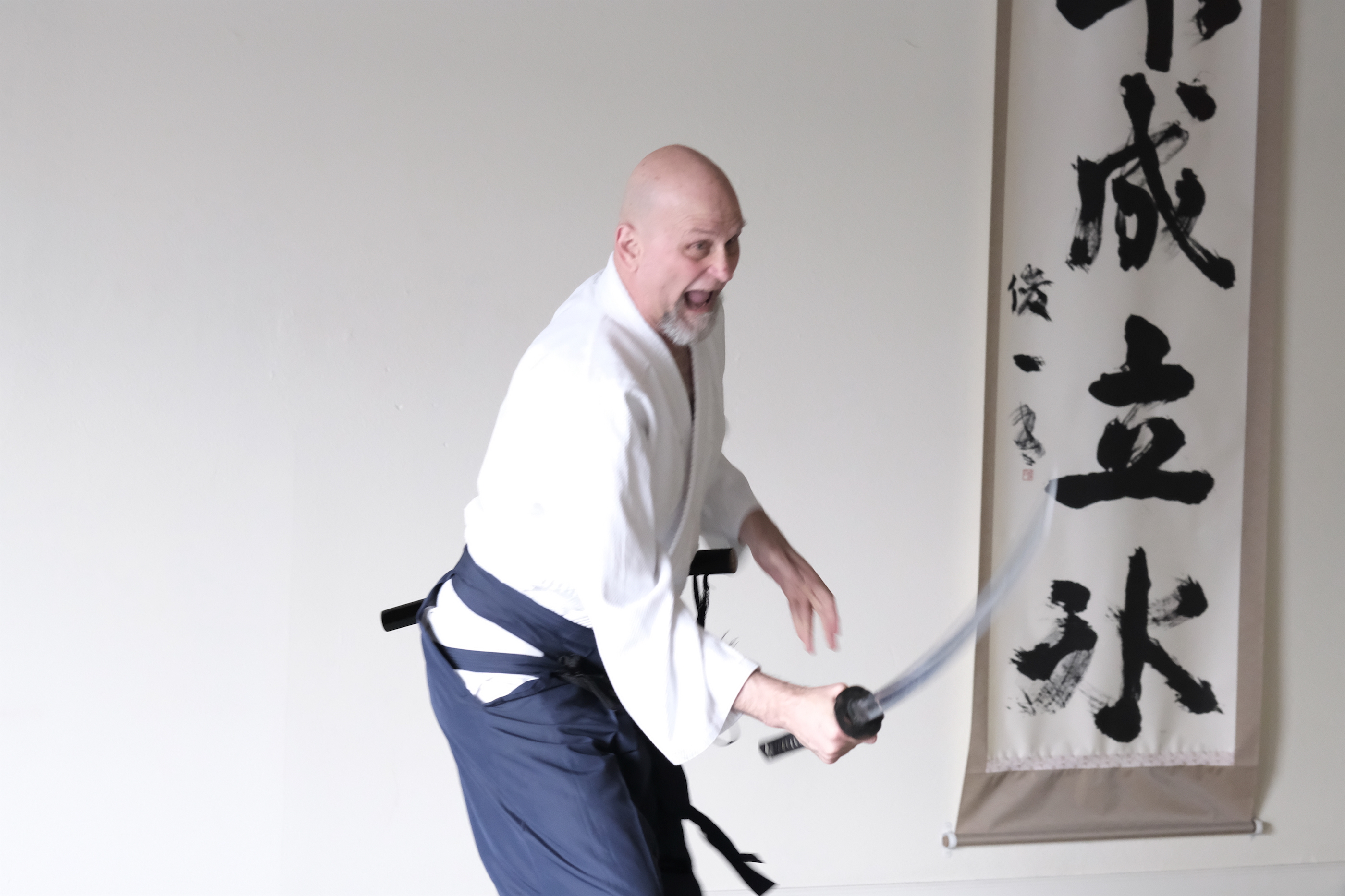 Learn aikido book